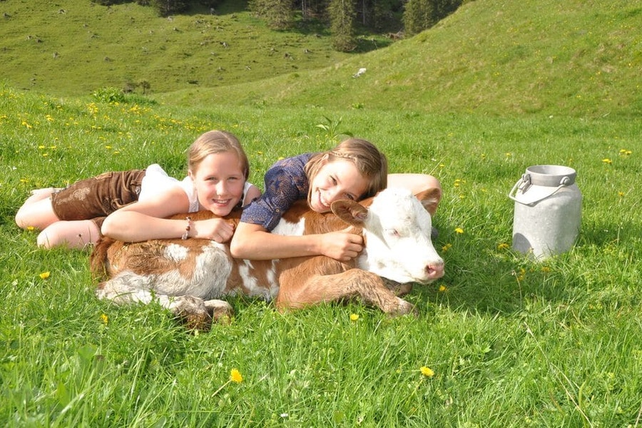 4 Tage Bauernhofurlaub
